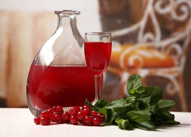 Настойка из калины на водке: рецепты приготовления в домашних условиях, калиновые настои, отвары и наливки