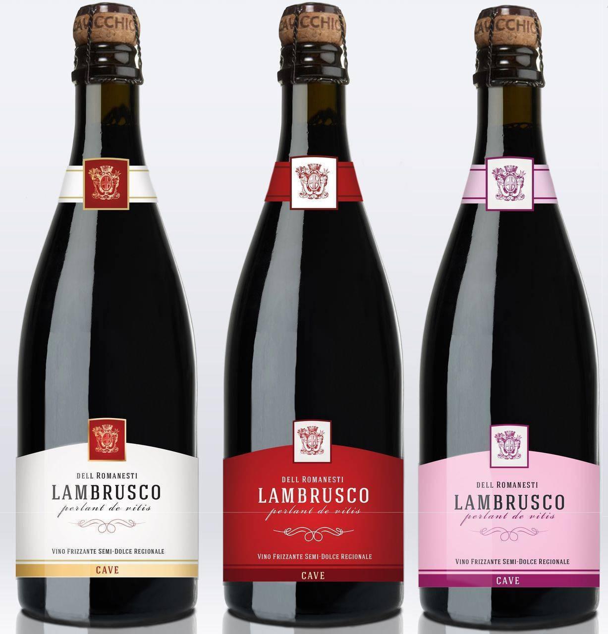 Итальянское шампанское ламбруско: история напитка, разновидности lambrusco и культура пития фруктового вина