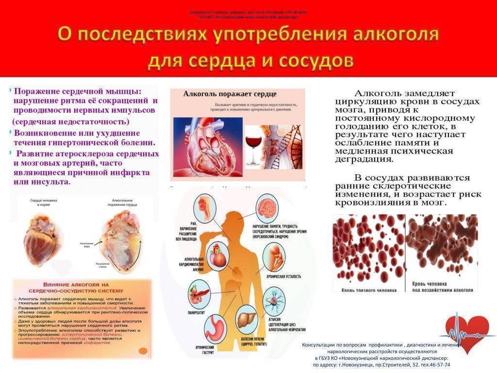 Как влияет алкоголь на уровень холестерина в крови?
