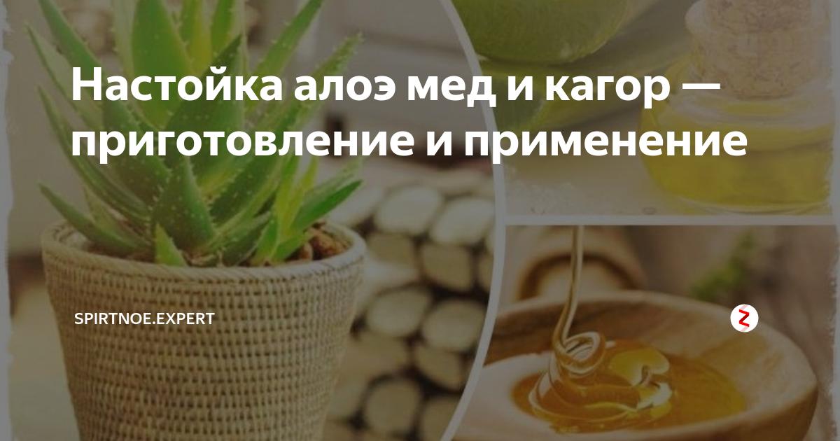 Алоэ, мед и кагор: универсальное домашнее лекарство
