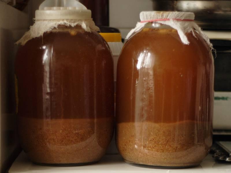 Вкусная брага для питья и медовуха: рецепты, как сделать питьевую брагу в домашних условиях