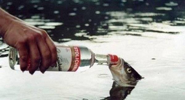 100 фактов об алкоголе и алкогольных напитках