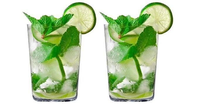 Настойка мелиссы. настойка мелиссы на водке — как правильно сделать спиртовую настойку