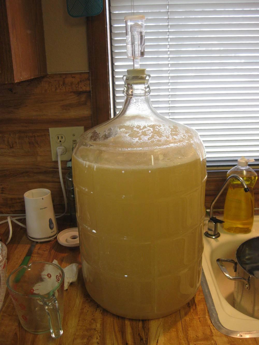 Получение самогона из пива очень простой и удобный способ