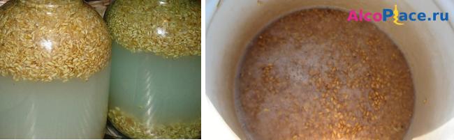 Зерновая брага на пшенице: секреты приготовления знаменитого хлебного самогона