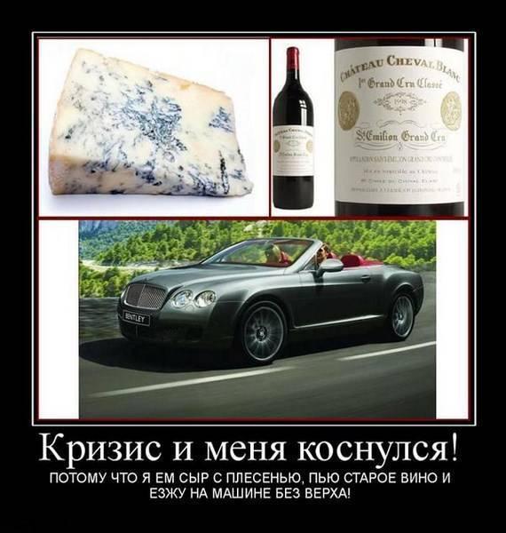 С каким вином едят сыр с плесенью   роспортал финансов