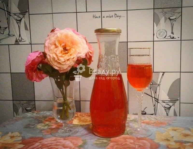 Наливка из лепестков розы: группа собираем урожай: хвастики, рецепты, заготовки
