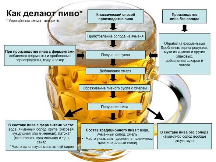 Срок годности пива и его стабилизация в контексте фильтрации