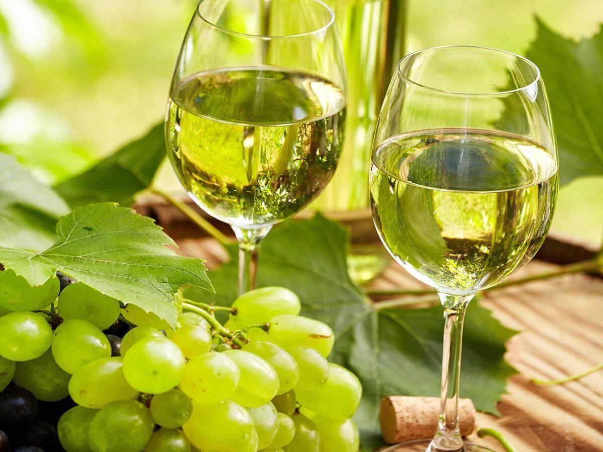 Как сделать шампанское из винограда в домашних условиях