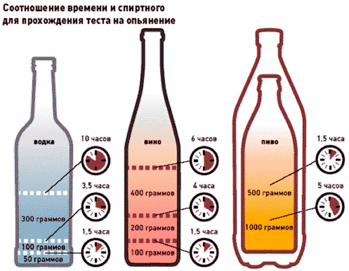 Как не опьянеть от алкоголя: меры до, во время и после застолья