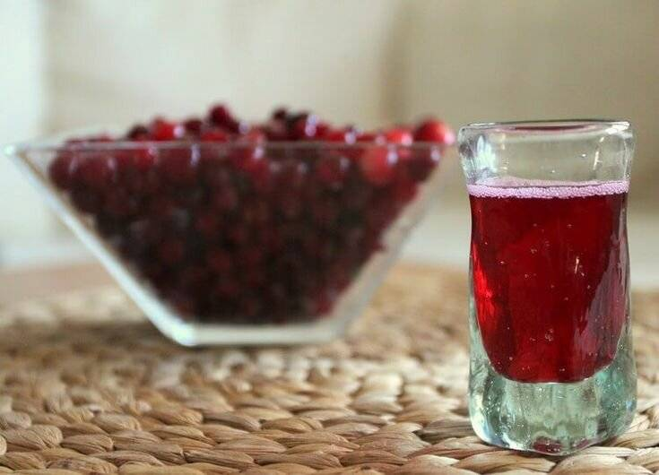 Готовим вкусные напитки за пару дней. рецепты быстрых настоек на самогоне