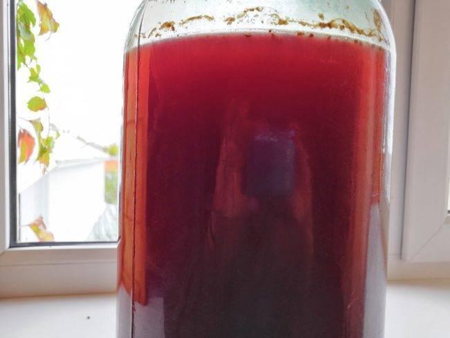 Вино из калины в домашних условиях по простым рецептам с водкой или медом