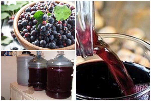 Вино из красной смородины — простые рецепты в домашних условиях