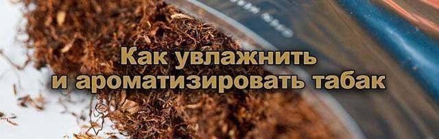 Как табак сделать ароматным - дневник садовода