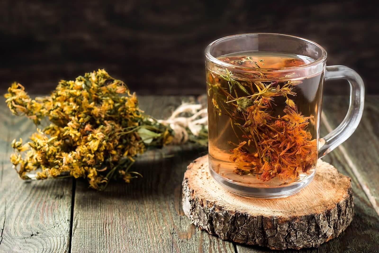 Травы от алкоголизма вызывающие отвращение – лучшие народные рецепты