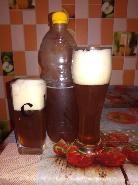 3 самых простых и быстрых рецепта домашнего пива
