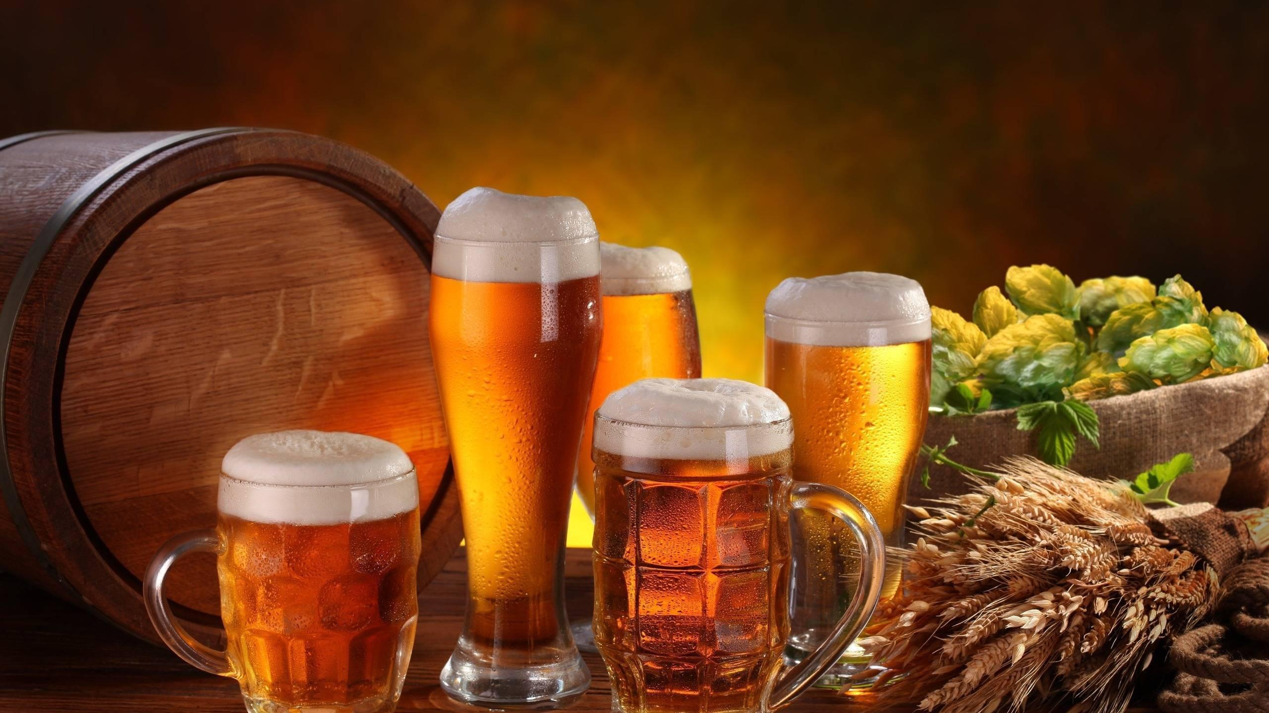 Как правильно пить пиво в баре
