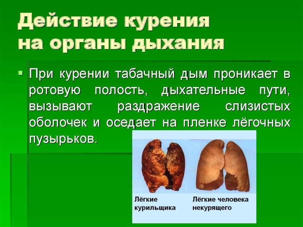 Болезни органов дыхания от курения