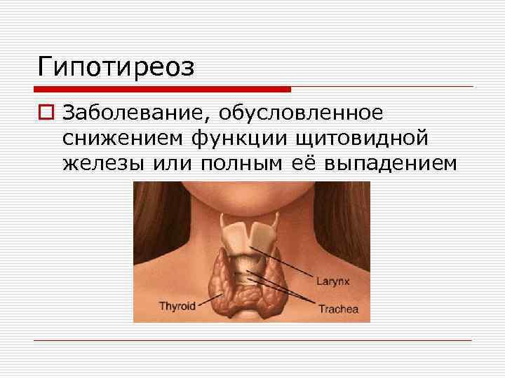 Можно ли пить алкоголь перед пункцией щитовидной железы
