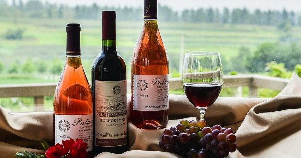 Как выбрать лучшее французское вино?