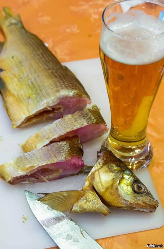 Рыба к пиву — выбираем лучший вариант закуски к пенному напитку