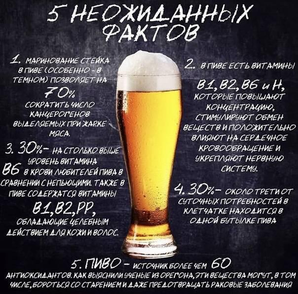 Интересное про пиво. 15 интересных фактов о пиве | интересные факты