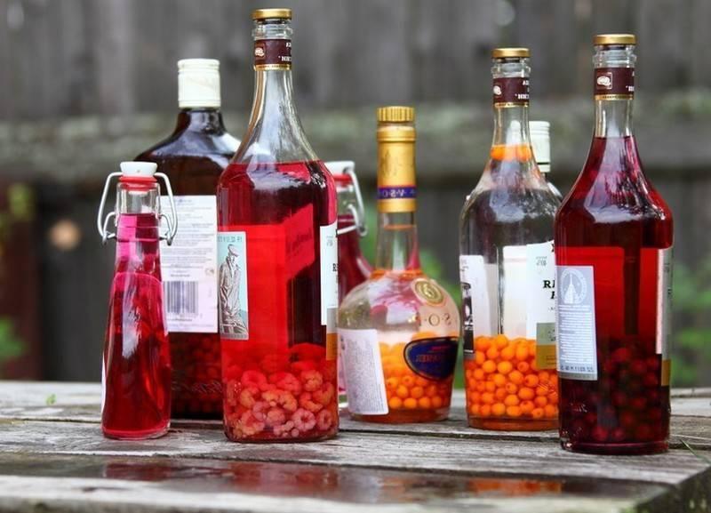 Не чачей единой! настойки из винограда на водке и «антипохмельная» виноградная настойка