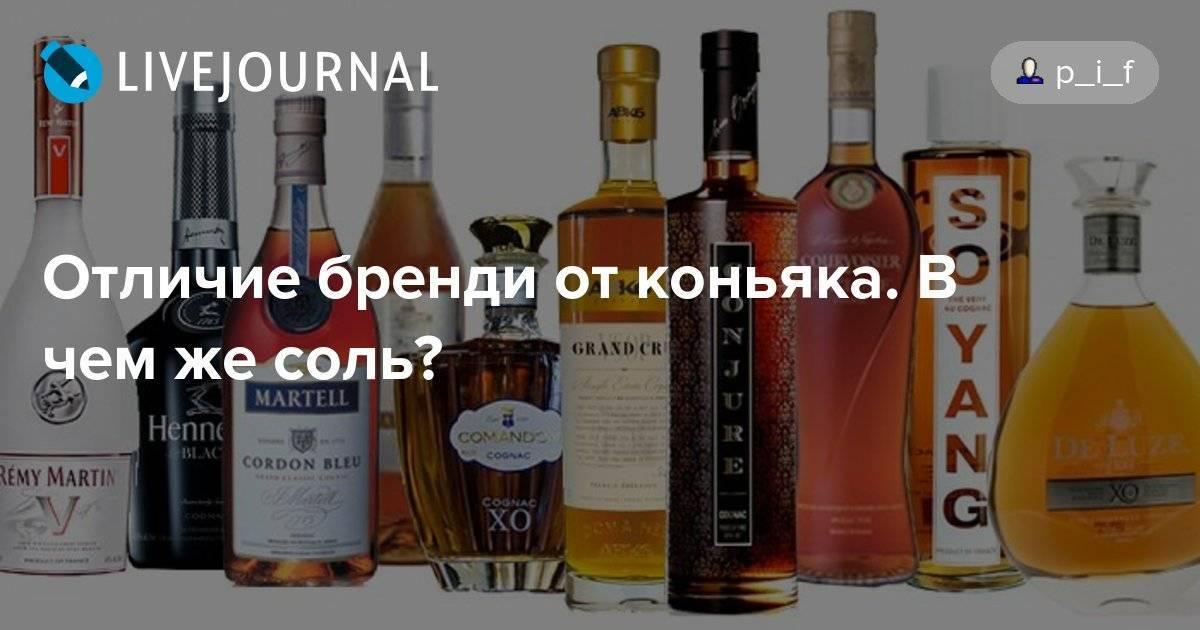 Как отличить коньяк от арманьяка и в чем особенности напитков