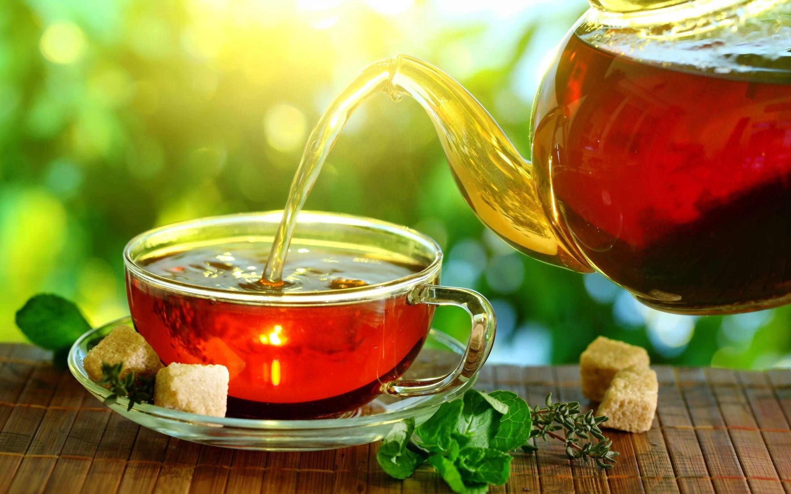 Чай с коньяком: польза и вред для нашего здоровья