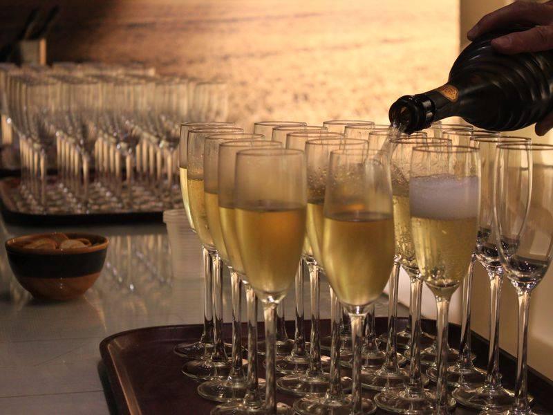Правила дегустации и вкусовые характеристики вин (видео)