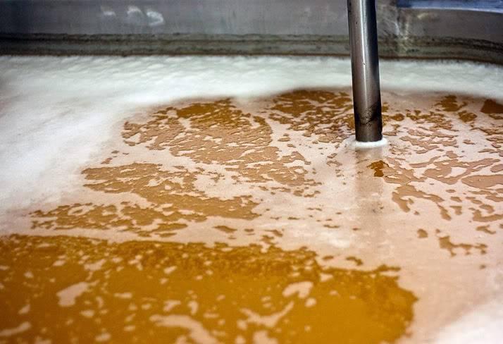 Брожение пива: первое и вторичное, температура и сроки брожения — рецепты, ингредиенты, приготовление, фото, видео
