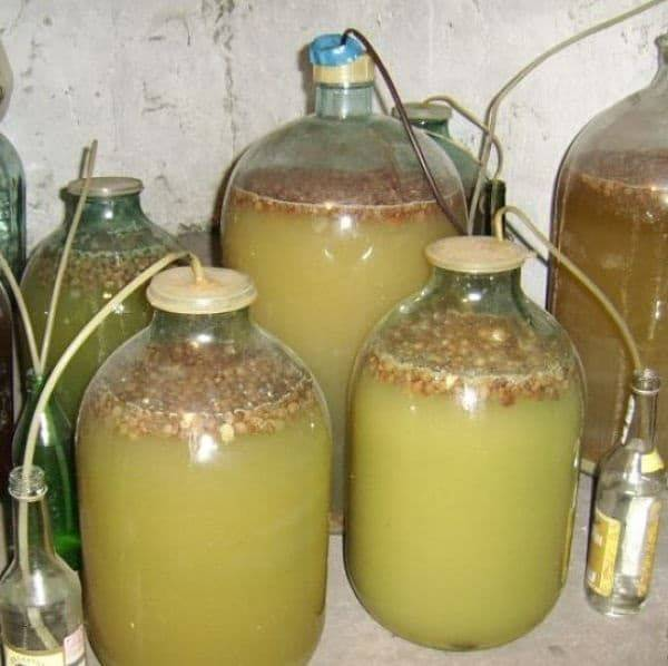 Почему не бродит мезга из виноградных или иных ягод, что делать, если сусло после отделения от выжимок не начало брожение?