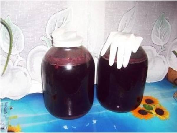 Вишневое вино дома: 2 способа не испортить хорошее, хоть и сложно