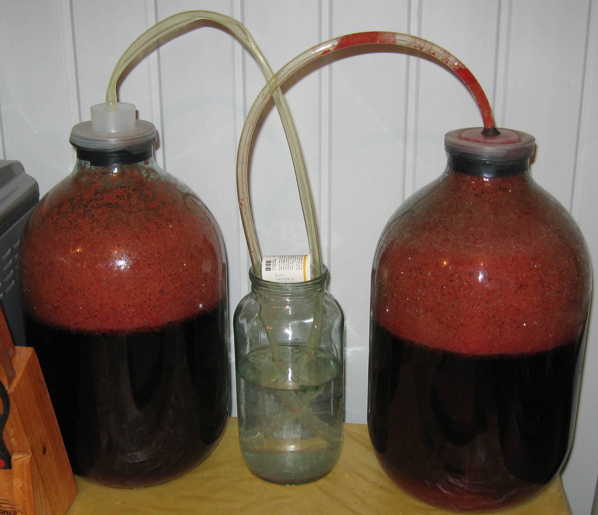 ТОП 5 способов, как можно остановить брожение вина в домашних условиях