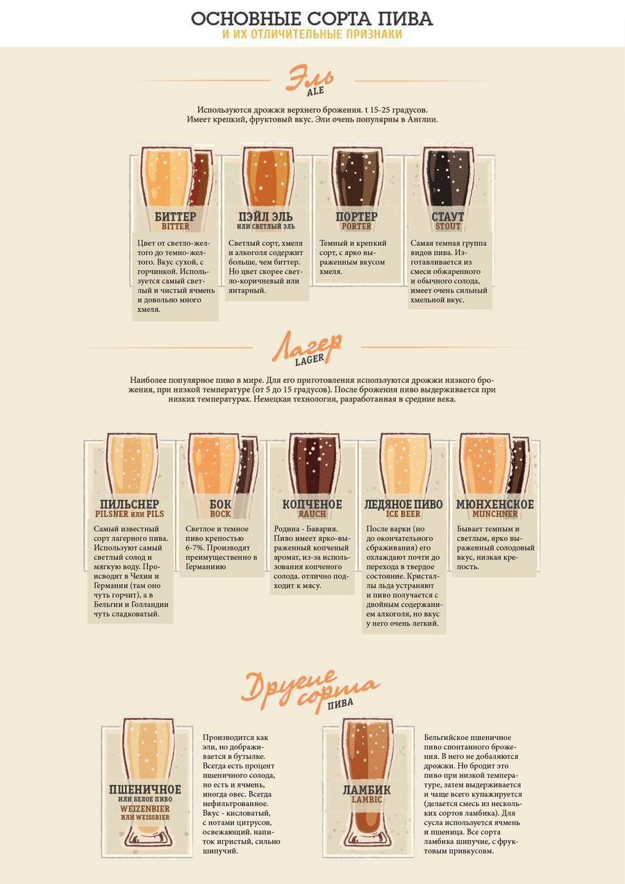 Пиво трехсосенское и его особенности