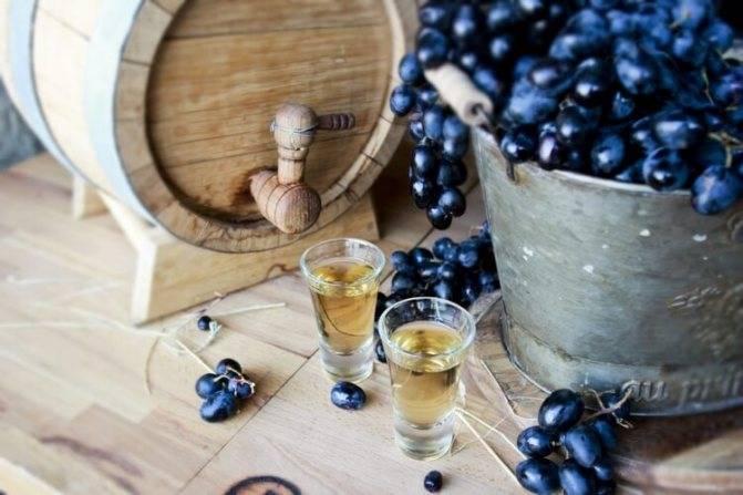 Брага из винограда – основа для будущей чачи