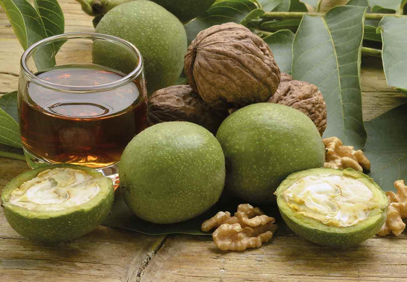 Настойка зеленого грецкого ореха – применение снадобья + видео