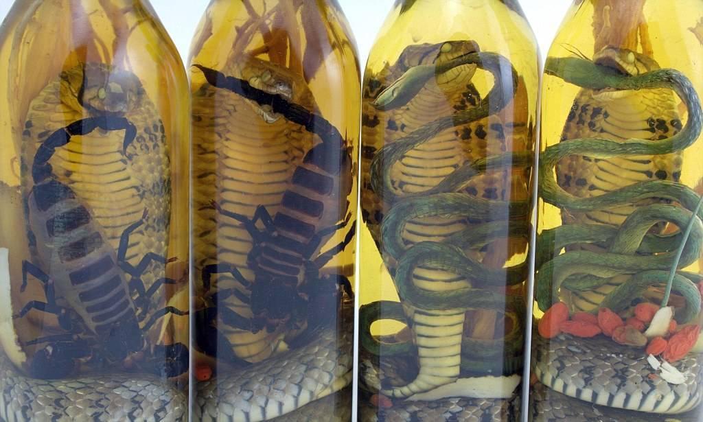 Змеевка (вино или водка со змеей) – экзотическое спиртное востока