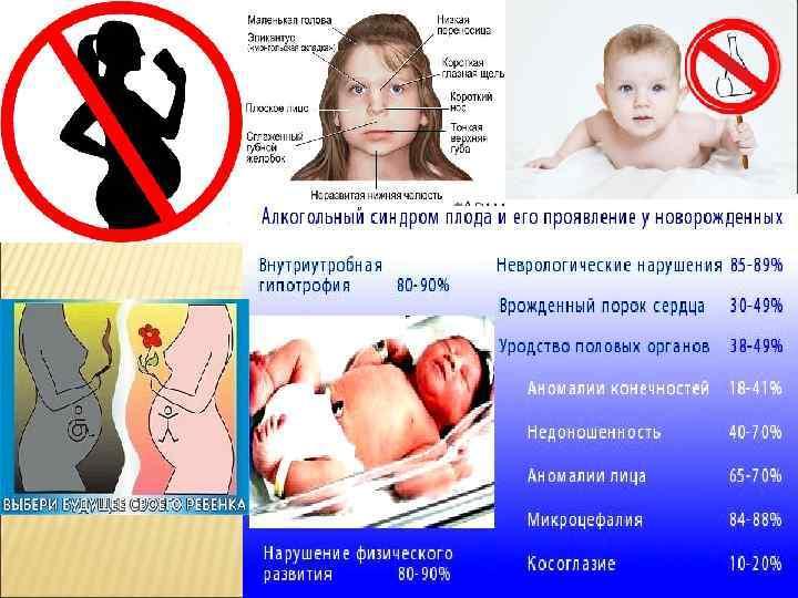 Влияние алкоголизма на эмбриональное развитие ребенка