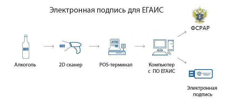 Сопровождение в егаис | alcosystem.ru