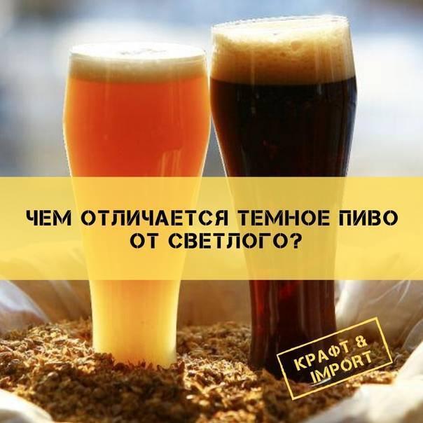 Отличие пивного напитка от пива