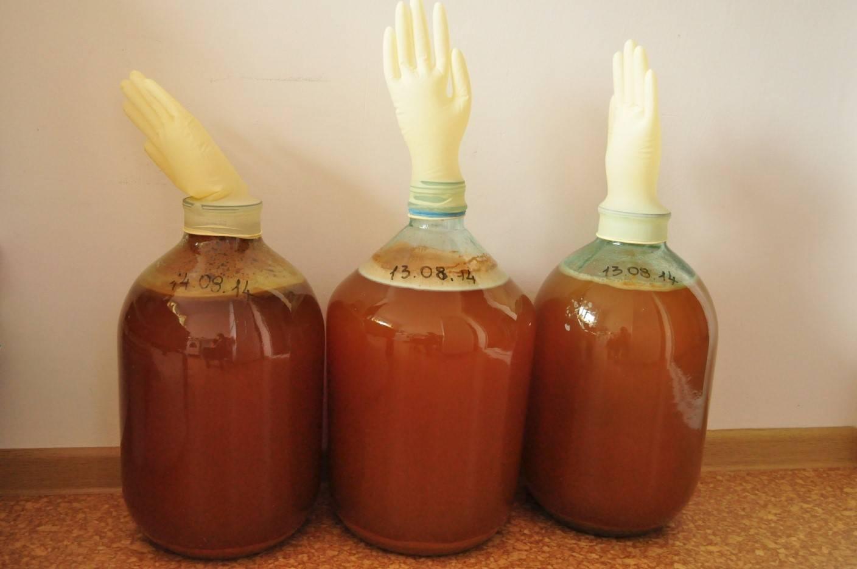 Вкусный рецепт самогона из яблок в домашних условиях