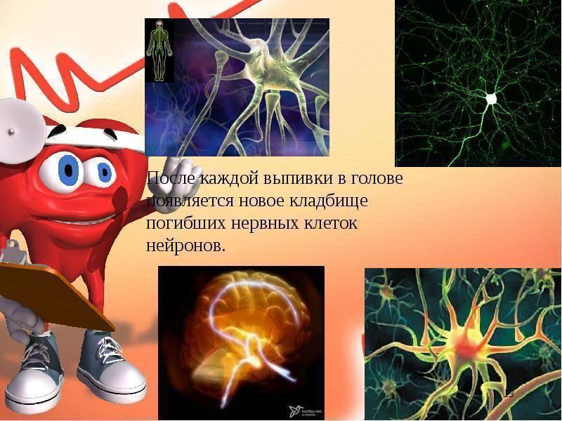 Влияние алкоголя на организм человека: основные последствия