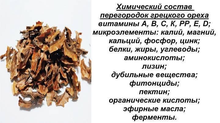 Перегородки грецких орехов: для чего нужны, полезные свойства для организма человека, особенности применения, калорийность