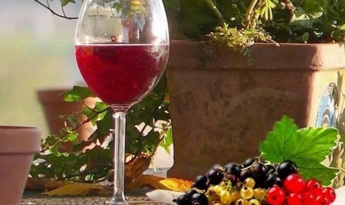 Вино из ежевики - 10 пошаговых рецептов   alco-safe   яндекс дзен