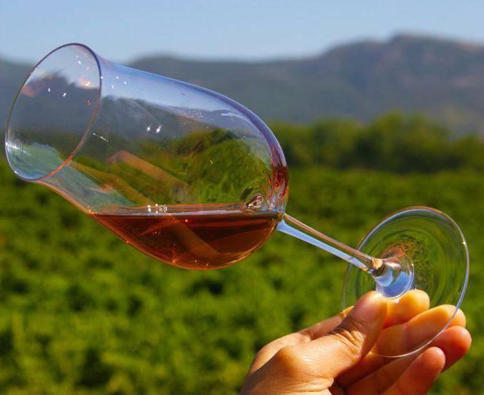Сухие вина португалии — 5 стилей, которые смогут вас удивить