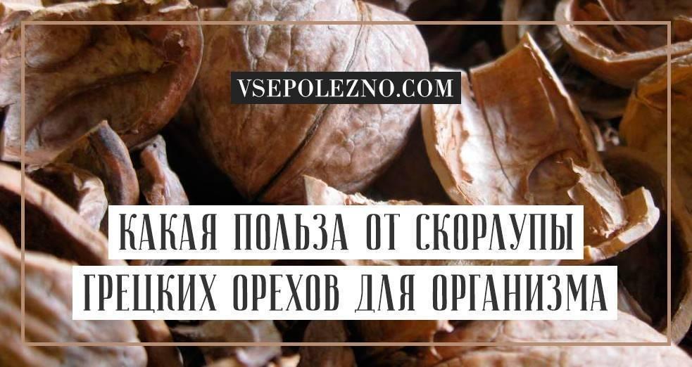 Полезные свойства грецкого ореха и противопоказания к употреблению