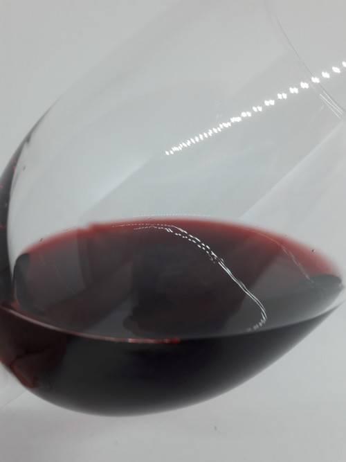 Обзор видов и марок аргентинских вин