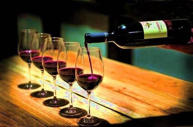 Что такое винный напиток? свойства, виды, марки, чем отличается от вина