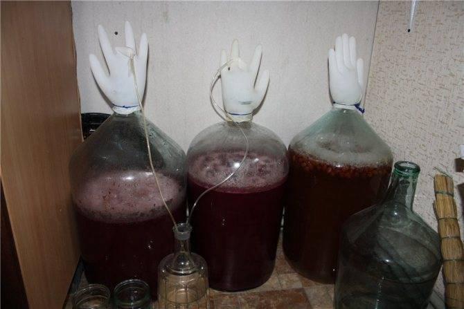 Вино из красной рябины в домашних условиях - пошаговый рецепт